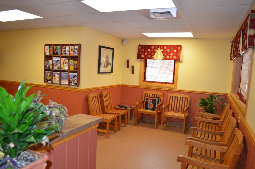 Canine Waiting Area - Manchester Veterinary Clinic, CT