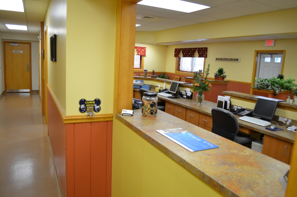Check out area - Manchester Veterinary Clinic, CT