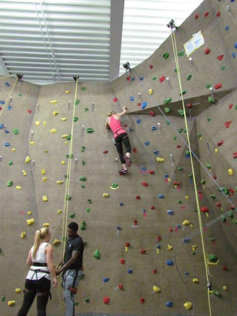Kayla took on the most difficult climb with ease - AFC Veterinary Challenge 2015 – Manchester Vet Clinic - CT