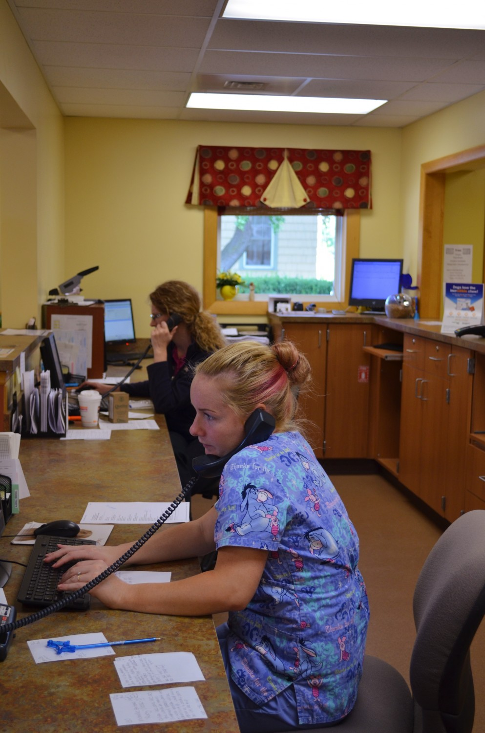 Shannon and Cecelia on a busy Monday morning - Manchester Veterinary Clinic - CT - Trusted Vets For Your Pets