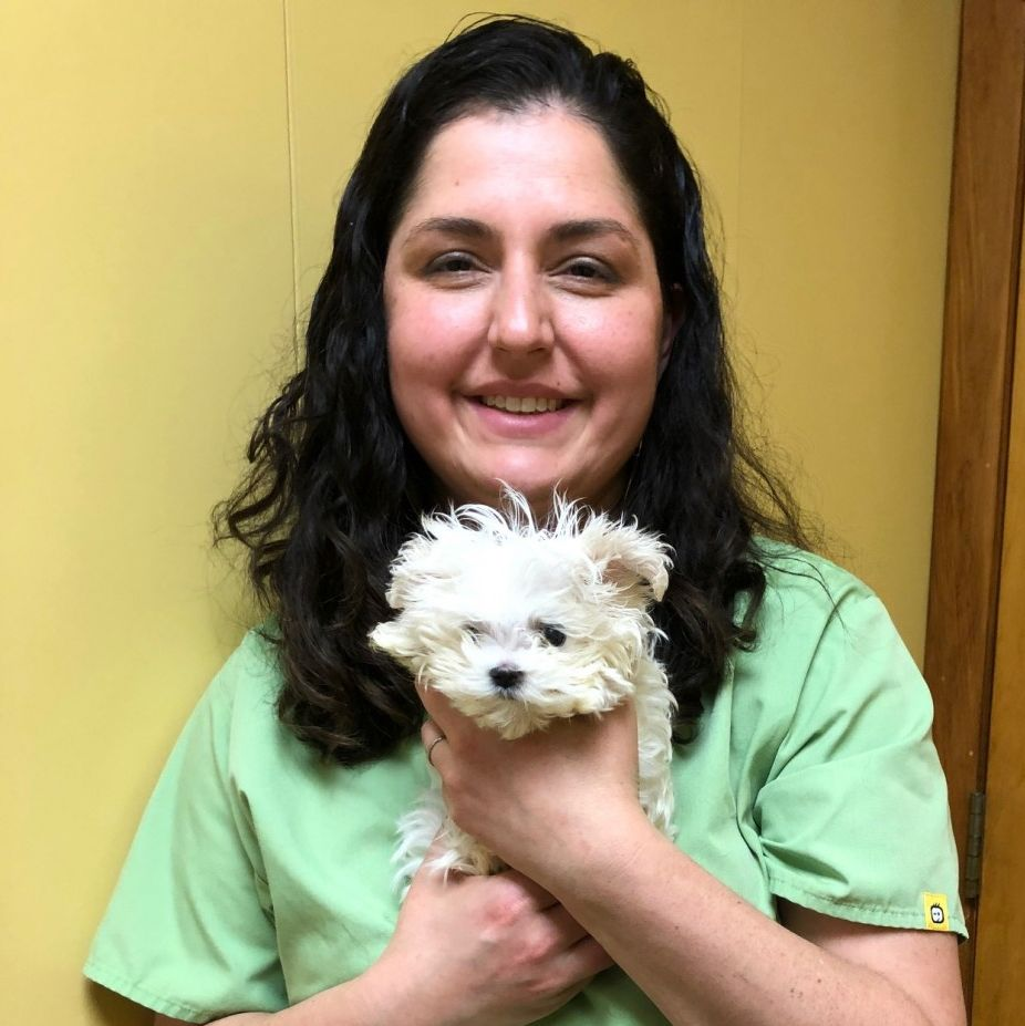Veterinarian Marie Bates - Manchester Veterinary Clinic - CT